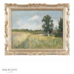 Fallow land – H3971